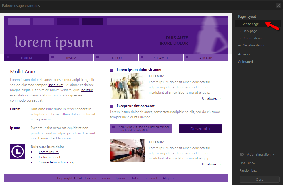 monochromatic website design