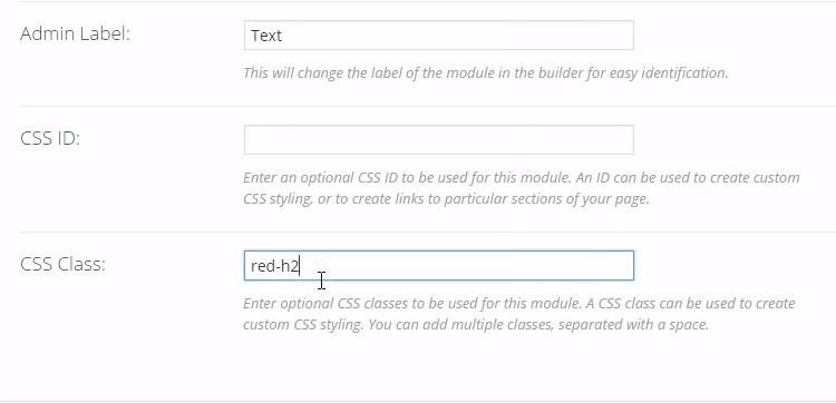 adding CSS Custom Class with CSS Hero