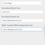 Edge theme slider options