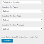 Astra WP theme container settings